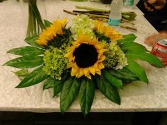 @Portfoliobox #girasoles #flores