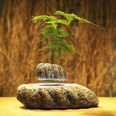 THINKER magnetic levitation air bonsai.