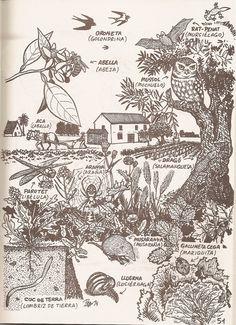 Ecosistema Horta Alicante, Tattoo Inspiration, Habitats, Vintage World Maps, Spain, Vegetable Garden, Valencia Spain, Community, Sevilla Spain