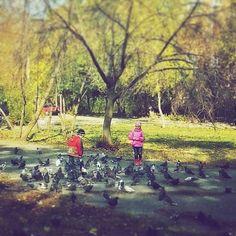 #citystreetsфото #donetsk #донецк И нет величия там, где нет простоты, добра и правды.