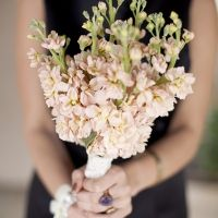 each girl carries a cluster of one type of flower, each bouquet different