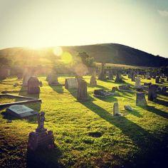 #sunrays #churchyard
