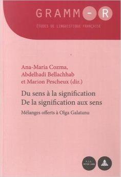 Du sens à la signification, de la signification aux sens / Ana-Maria Cozma, Abdelhadi Bellachhab et Marion Pescheux (dir.) - Bruxelles : P.I.E. Peter Lang, cop. 2014