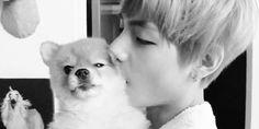 Ahahaha, don't eat him Taehyung. ~~