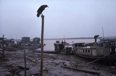 Alex Webb, Port of La Hoyada, Pucallpa, Peru, 1993.