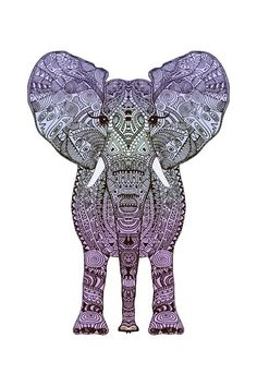 elephants symbolize strength, honour, stability, patience, slow ascent to success, dignity, power, happiness, determination and loyalty, rememberance, and wisdom.