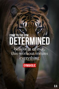 Come To The Gym Determined Fitness Revolution -> http://www.gymaholic.co/ #fit #fitness #fitblr #fitspo #motivation #gym #gymaholic #workouts #nutrition #supplements #muscles #healthy