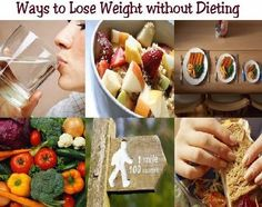 Foods That Help Lose Belly Fat