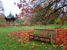 Wisley Garden, UK