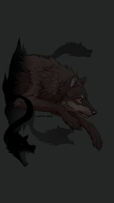 Storm he was found a bit out from the packs den and was weak and tired so shadow pack took him in  He is strong fast and outgoing