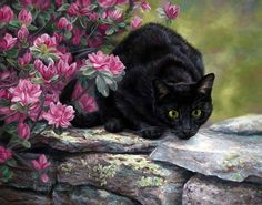 LUCIE BILODEAU ~ curious black cat with green eyes