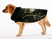 Police style coat for large dogs, how cool is this???!!!  www.calvinknine.com