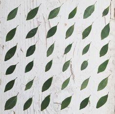 Twenty20 ~ Herbs pattern
