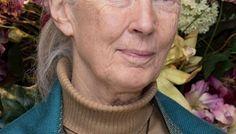 Pierce Brosnan e Jane Goodall fazem campanha para defender Lei de Espécies Ameaçadas