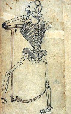 persian anatomical illustrations