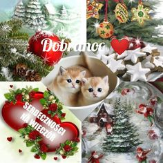Christmas Bulbs, Holiday Decor, Humor, Polish, Christmas Light Bulbs, Humour, Funny Photos, Funny Humor, Comedy