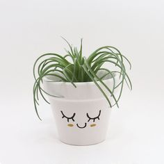 Terracotta Pot Succulent Planter Cute Face by TimberlineStudio