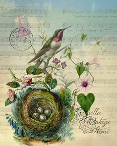 Botanical Purple Hummingbird with Nest Print, Pillow, Note Cards is part of Vintage painting Inspiration - Original artwork created from vintage bookplates, etchings & papers Printed in the USA on handcrafted paper Vintage Cards, Vintage Paper, Vintage Postcards, Vintage Ephemera, Vintage Pictures, Vintage Images, Bird Pictures, Impressions Botaniques, Etiquette Vintage