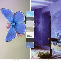 Wall Paint | Wall Colors | Painting Walls