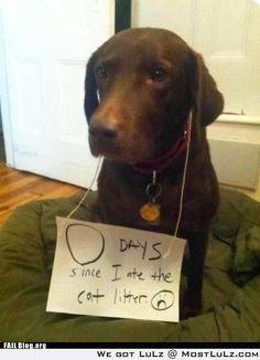 punishment !!