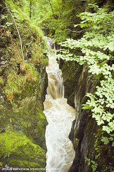 Baxenghyll Gorge, Ingleton in the Yorkshire Dales National Park, North Yorkshire, England