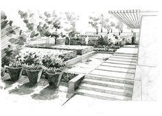 max-sketch-5-Panorama-S.jpg
