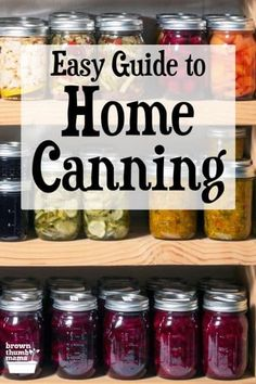 Home canning is a great skill to learn, with lots of benefits! This guide to home canning includes all the basics you need to get started. Stock your pantry with delicious, home-canned jellies, pickles, and vegetables and enjoy their delicious flavors all year long. #canning #forbeginners #healthyeating #natural Easy Canning, Canning Tips, Home Canning, Canning Recipes, Healthy Dinner Recipes, Appetizer Recipes, Low Acid Recipes, Canning Process, Acidic Foods