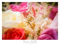Gold wedding rings in red, white, and purple roses.  NJ Wedding