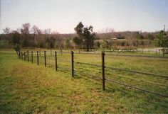 Safe affordable horse fencing - recycled rubber lines with high tensile strength.