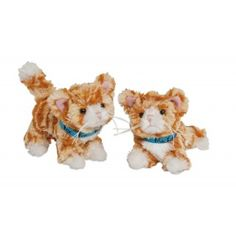 Give your Maplelea Girl dolls a companion with these adorable animal friends! Choose from dogs and puppies, cats and kittens, horses, and more from these animal accessories for dolls. Orange Tabby Cats, Friend Outfits, Pet Accessories, Cats And Kittens, Dogs And Puppies, Baby Dolls, Cute Animals, Fox, Teddy Bear