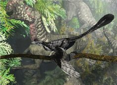 Altirhinus watching from a Microraptor - Andreas - Prehistoric life