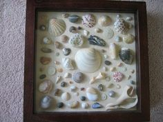 Shadow box idea ~ could make somehting like this to decorate bathroom with seashore or nautical theme
