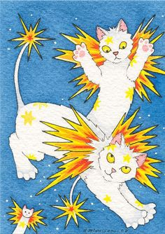 Sparks will fly cat fairies