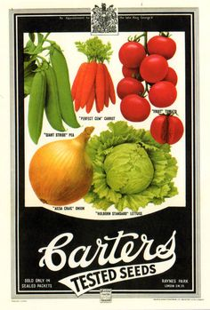 vintage seed packet - carter's tested seeds