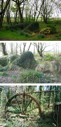 Seemingly abandoned statues in the haunting Lost Gardens of Heligan
