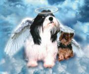 Puppy heaven where they are waiting for us to arrive Real Psychic Readings, Willow Tree Angels, Your Guardian Angel, I Believe In Angels, Angels Among Us, Angels In Heaven, Pet Loss, Rainbow Bridge, Dog Quotes