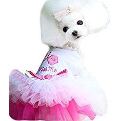 Duyi Princess Dress Dog Lips Veil Lace Skirt Pet Dog Tutu Clothes Pink XXL