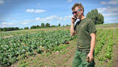 Dinamarca - o primeiro país que, por lei, só terá agricultura biológica