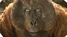 The Jungle Book AMAZING New 360° Video (2016)
