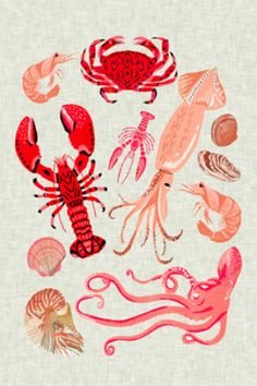 Crustaceans Sea Life Illustration By Andrea Lauren Laptop & Ipad Skin by Andrea Lauren Design - MacBook / Pro / Air Crab Illustration, Ocean Fabric, Framed Art Prints, Canvas Prints, Andrea Lauren, Food Illustrations, Beach Art, Painting Inspiration, Art Pieces