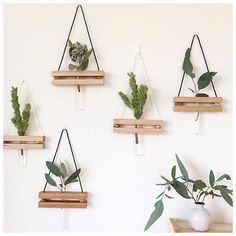 We love these hanging test tube vases by Diy Bedroom Decor, Diy Home Decor, Wall Decor, Test Tube Crafts, Hanging Vases, Hanging Shelves, Small Wood Projects, Creation Deco, Plant Holders