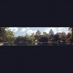Central park :) peaceful and serene escape from the frenetic pace