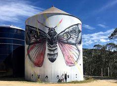 "Twoone - ""Big Fella"" in Falls Creek, Australia Murals Street Art, Street Art Graffiti, Graffiti Artwork, Mural Art, Barn Art, Falls Creek, Old Barns, Outdoor Art, Pictures To Paint"