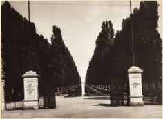 Bosco Virgiliano - 1925-1945 - Mantova Ingresso