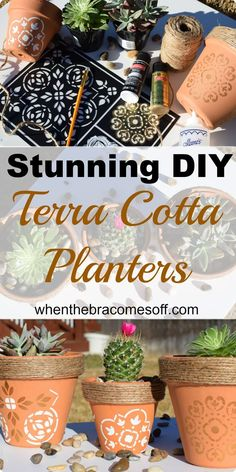 DIY Terra Cotta Planters for succulents, herbs, and flowers. Gardening pot tips.