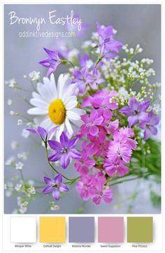 Super Ideas For Flowers Bouquet Black Roses My Flower, Flower Power, Beautiful Flowers, Colorful Flowers, Purple Flowers, Spring Flowers, Wild Flowers, Flowers Gif, Spring Bouquet