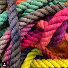 Hand dyed rope <3! #leashlife #leashes #rope #ombre #notyers+silkshaman #dog #cat #horse #madeinusa