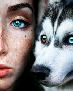 Claire Luxton Her Amazing Portraiture Beautiful Eyes Color, Pretty Eyes, Cool Eyes, Animals Beautiful, Eye Photography, Types Of Photography, Animal Photography, Wolf Life, Aesthetic Eyes