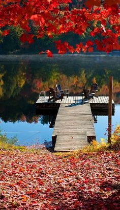 Colors of Fall in Algonquin Park, Ontario, Canada | Flickr - Photo by Igor Laptev