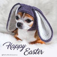 #crochet #crochetdog #crocheteaster #easter #dog #doghat #hats